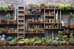 Wall Plant Shelf by Wall Of Plant Shelves Done So Jard 237 Garden