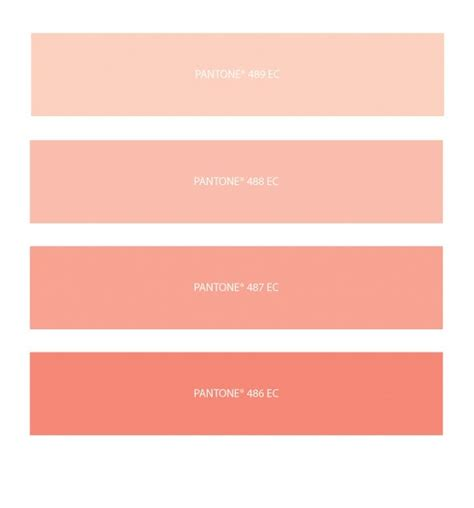 peach pantone 49 best pantone color images on pinterest color palettes