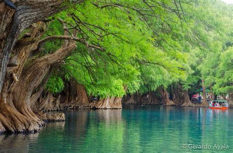 le lago fotos de lago camecuaro im 225 genes