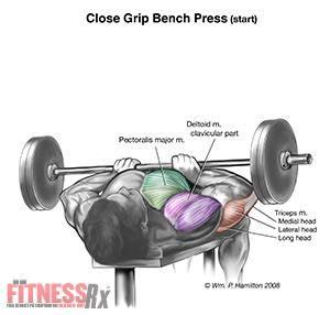 close grip barbell bench press 45 best 2016 upper body chest barbell bench press images