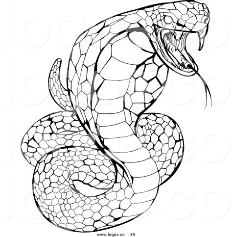 coloring pages of snake heads how to draw a cobra coloring pages