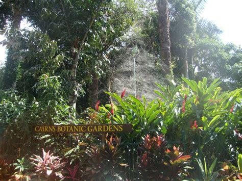 Botanical Garden Cairns Cairns Attractions Arrow Walk