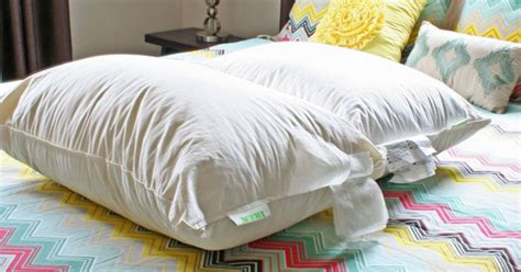 how to clean sofa pillows cleaning feather sofa cushions 28 images how to clean