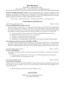exles of professional resumes writing resume sle
