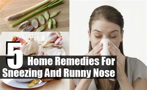 top 5 home remedies for sneezing and runny nose diy