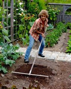 Vegetable Garden Guide How To Instructions Martha Martha Stewart Vegetable Garden