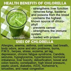 Which Is Better To Detox Radiation Spirulina Or Chlorella by 1000 Images About Zeal For On Zeal
