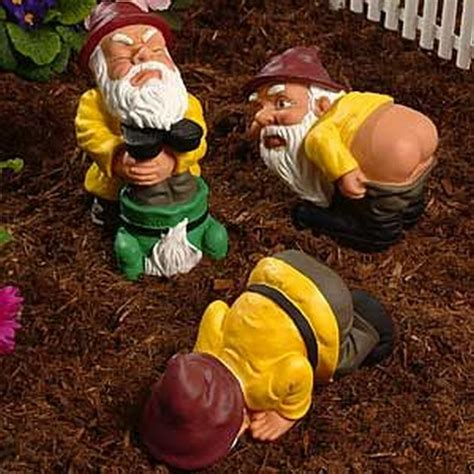 lawn gnome hilarious bing images evil lawn gnomes bing images