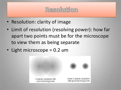 introduction to the light microscope introduction to the light microscope