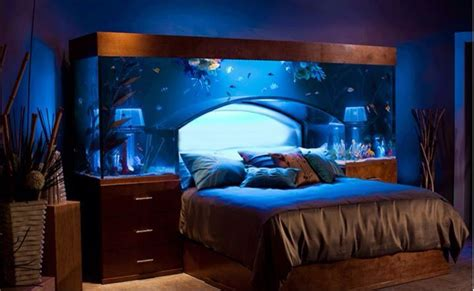 fish tank bedroom fish tank bedroom fish pinterest