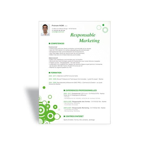 Modèle De Cv Format Word by Resume Format Exemple De Cv Gratuit Marketing