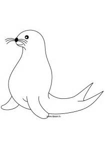 seal coloring pages coloring seal