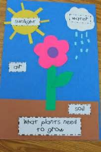 1000 ideas about plant crafts on pinterest easy crafts diy and home improvement and craft ideas