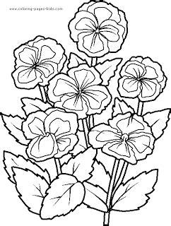 gambar flora sketsa berwarna gambar mewarnai