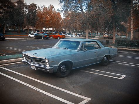 hayes car manuals 1966 ford fairlane electronic throttle control service manual how to remove sunroof console 1965 pontiac tempest service manual replace