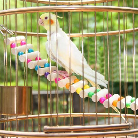 Aliexpress.com : Buy 4 Styles Small Birds Toys Pet Toy