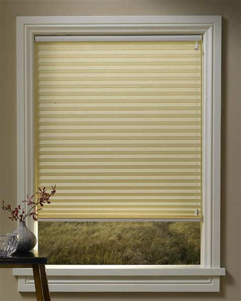 Blackout Shades For Windows Decorating Blackout Window Shades All About House Design Best Window Shade Ideas