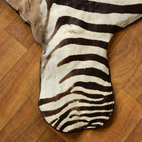 Zebra Rug For Sale by Zebra Size Rug For Sale 17855 The