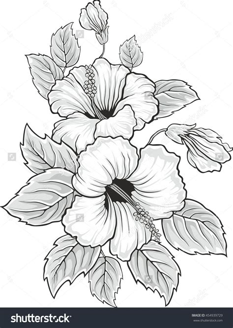 7 Sketches Hawaii by Stock Vector Blooming Beautiful Hibiscus Flower Hawaii