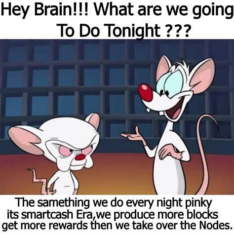 Pinky And The Brain Meme - pinky meme 100 images te esta llevando la verga pinky memes en quebolu what are we going to