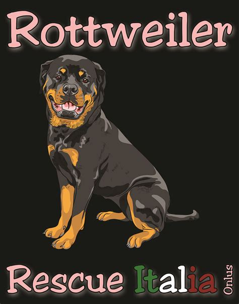 rottweiler rescue in illinois rottweiler rescue italia onlus