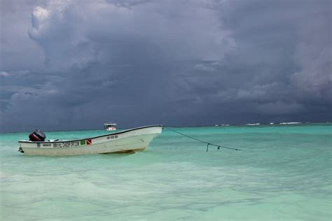 boating license for ocean free images beach sea coast ocean boat shore