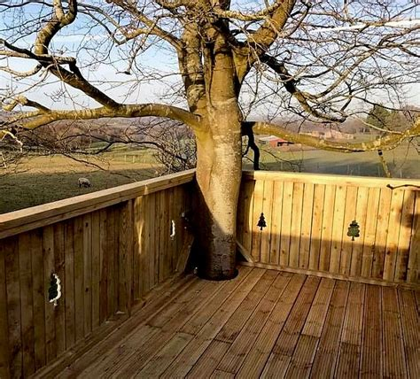 planning permission for tree house interesting planning permission tree house images exterior ideas 3d gaml us gaml us