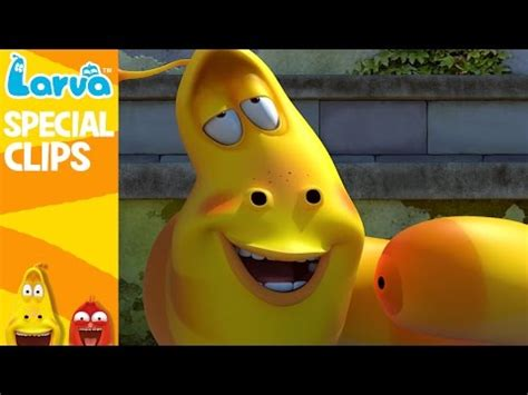 film larva 2016 official larva funny collection part1 funny animation
