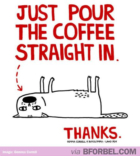 Monday Coffee Meme - every monday morning this is me b for bel