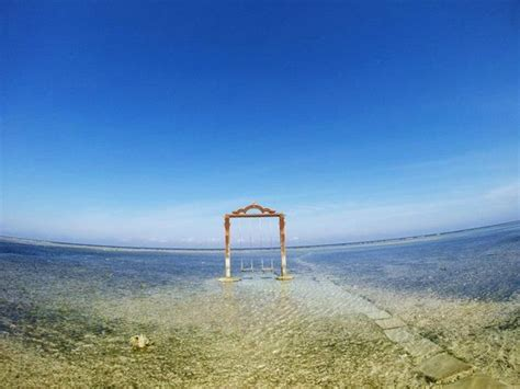 sunset swings reviews the swing picture of hotel ombak sunset gili trawangan