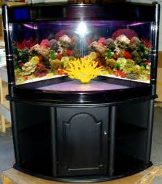 Aquarium fish tanks for sale home decor u nizwa