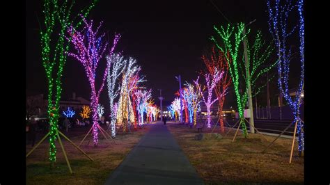 what tree holds lights better u s army in area i korea holds tree lighting ceremonies