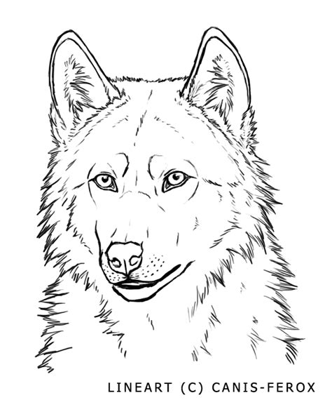 wolf face free lineart by canis ferox on deviantart
