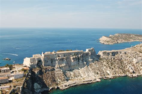isola gabbiano isole tremiti isola di san nicola l isola storica