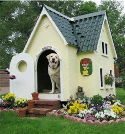 awesome dog house awesome dog house cute stuff pinterest awesome dogs