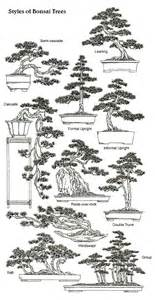 style tree classical bonsai styles