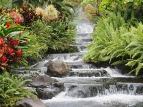 Spell Backyard How To Design Your Own Serenity Garden General Home