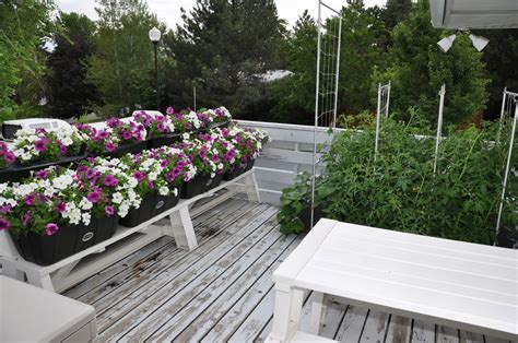 backyard ideas for cheap backyard ideas for cheap outdoor furniture design and ideas