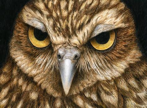 imagenes figurativas no realistas de animales cuadros pinturas oleos pinturas realistas animales con