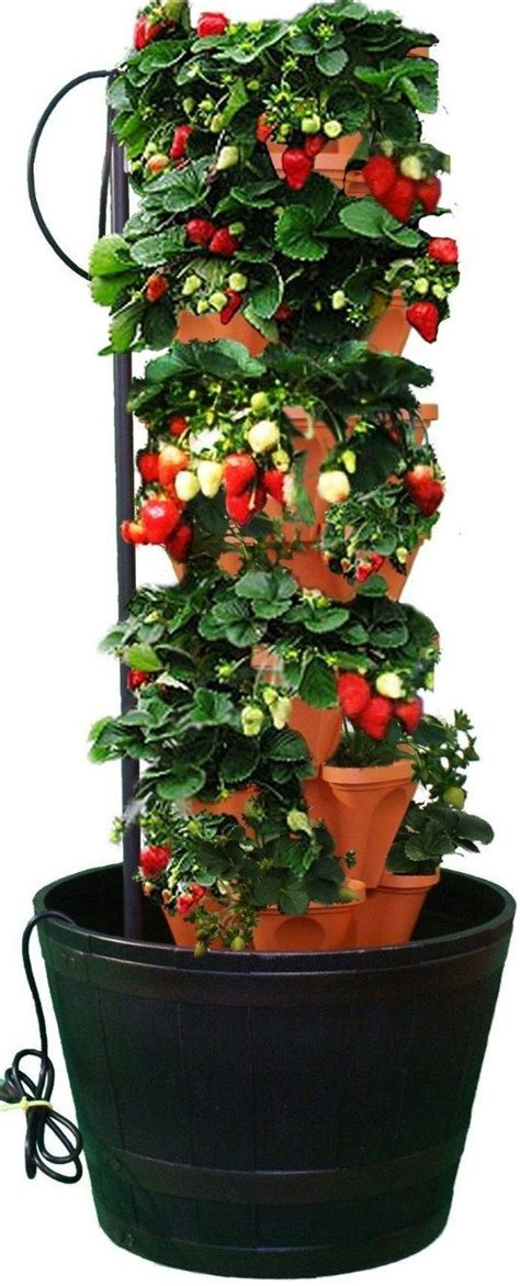 strawberry planter ideas best 25 strawberry planters ideas on