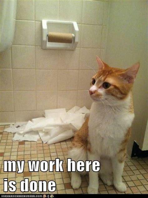 My Work Here Is Done Meme - my work here is done funny memes pinterest