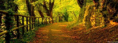 path   woods  autumn facebook cover photo