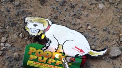 poopy puppy poopy puppy firework