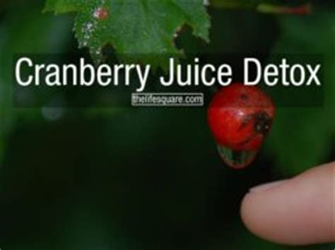 Why Is Cranberry Juice For Detox by 4 Genuine Effective Ways To Lose Quickly