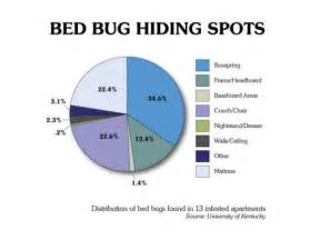 How Big Is A Bed Bug Bed Bugs In Schools