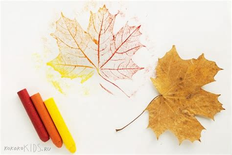 How To Make Wax Paper Leaves - leaf rubbings kindies autumn