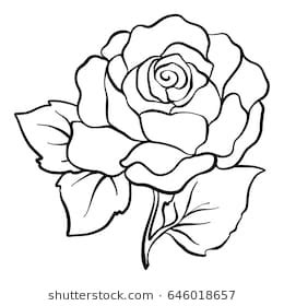 rose outline images, stock photos & vectors | shutterstock