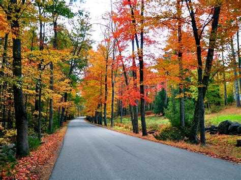 new fall foliage road trips travelchannel