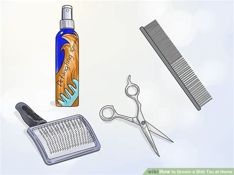 4 Ways To Groom A Shih Tzu At Home Wikihow