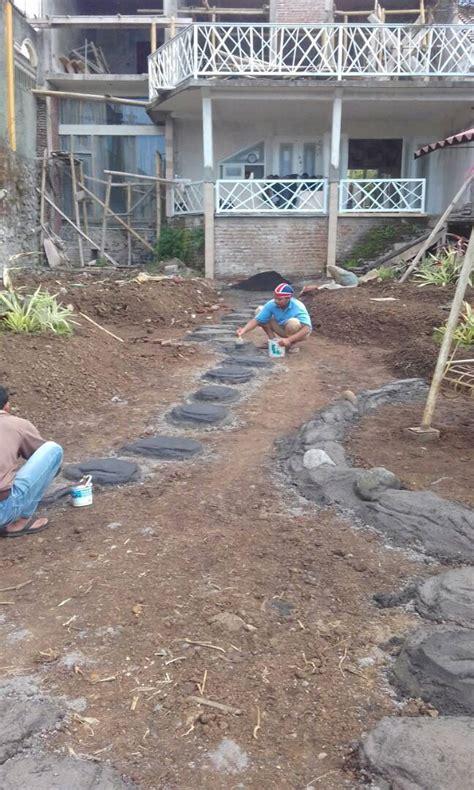 Jual Bibit Rumput Gajah Mini Malang suplay rumput gajah mini di batu malang jual rumput
